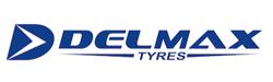 Tyres Delmax car