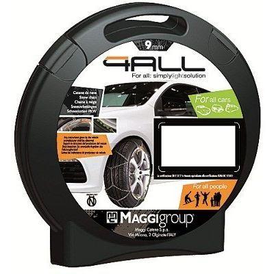 Maggi Group 4ALL