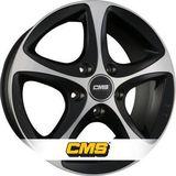 CMS C12