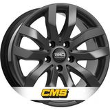 CMS C22
