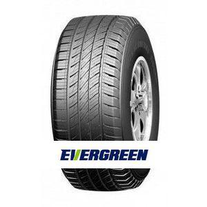 Padangos Evergreen ES380
