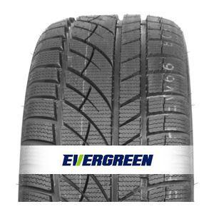 Evergreen EW66 255/50 R19 107H XL, 3PMSF