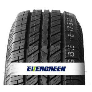 Guma Evergreen ES82