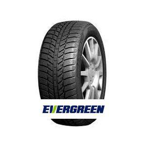 Evergreen EW616 195/75 R16C 107/105R