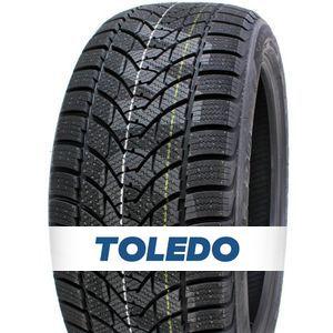 Toledo Bluesnow 205/55 R16 91H 3PMSF