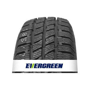 Padangos Evergreen EW616